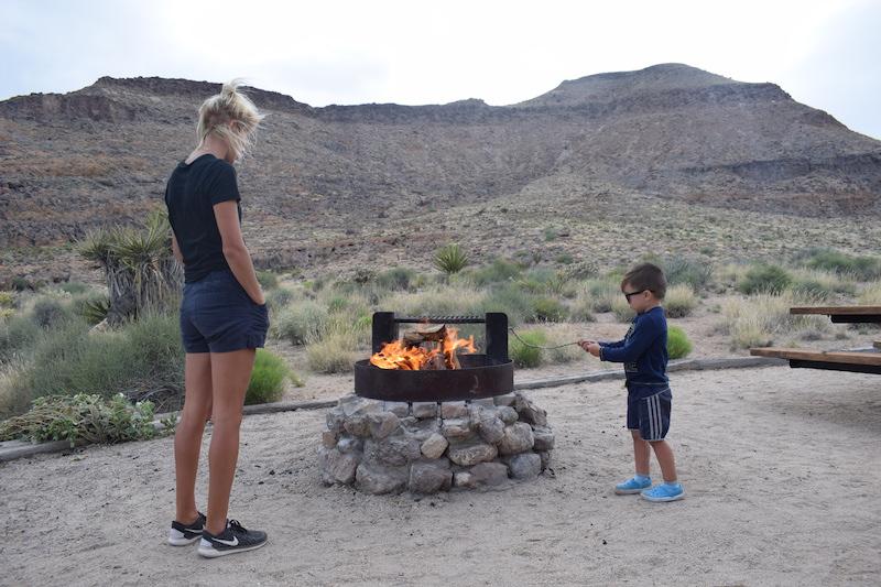 Mojave desert national park campfires