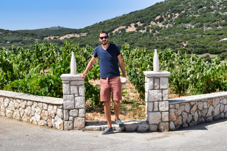 Robola winery in Kefalonia