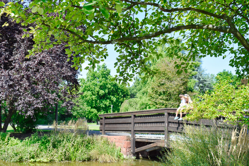 Stadtpark in Nuremberg
